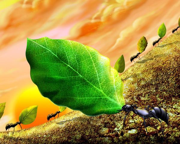 trabajo de hormiga