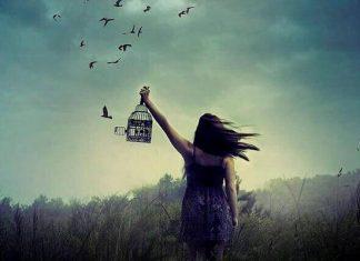 liberar-felicidad