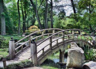 el-puente-reflexion