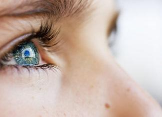 tus ojos-octavio paz