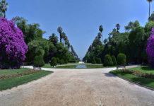 jardin senderos