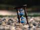 reloj de arena elvira sastre poemas